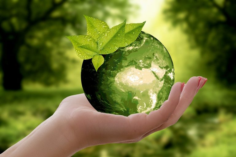 nature, earth, sustainability-3289812.jpg